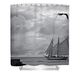 Chasing The Wind IIi Shower Curtain