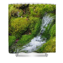 Shower Curtain featuring the photograph Chasing Waterfalls by Marilyn Wilson