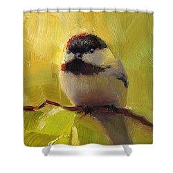 Chatty Chickadee - Cheeky Bird Shower Curtain by Karen Whitworth