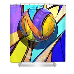 Check Barrels 35  Shower Curtain
