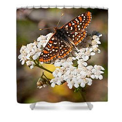 Shower Curtain featuring the photograph Checkerspot Butterfly On A Yarrow Blossom by Jeff Goulden
