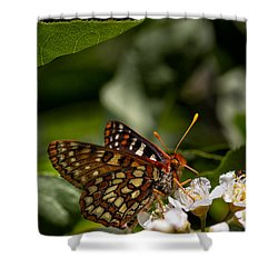 Checkerspot Sipping Nectar Shower Curtain