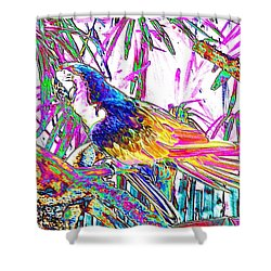 Cheerful Parrot. Colorful Art Collection. Promotion - August 2015 Shower Curtain