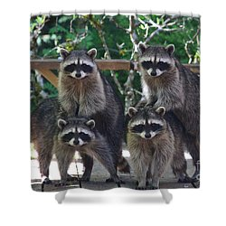 Cheerleading Raccoons Shower Curtain by Kym Backland