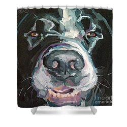 Cheese Shower Curtain by Kimberly Santini