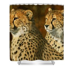Cheetah Brothers Shower Curtain by David Stribbling