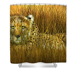 Cheetah - In The Wild Grass Shower Curtain by Carol Cavalaris