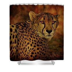 Cheetah Shower Curtain by Sandy Keeton