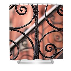 Chelsea Wrought Iron Abstract Shower Curtain