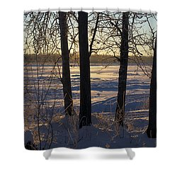 Chena River Trees Shower Curtain by Cathy Mahnke