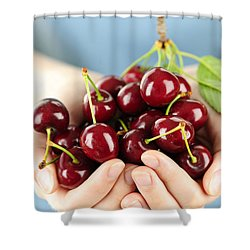 Cherries Shower Curtain by Elena Elisseeva