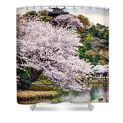 Cherry Blossom 2014 Shower Curtain