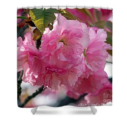 Shower Curtain featuring the photograph Cherry Blossom by Gena Weiser