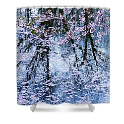 Cherry Blossom Reflections Shower Curtain