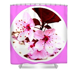 Cherry Blossom Shower Curtain by The Creative Minds Art and Photography