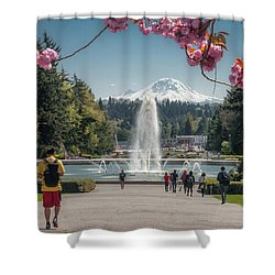 Cherry Blossom View Shower Curtain