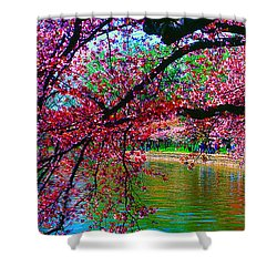 Cherry Blossom Walk Tidal Basin At 17th Street Shower Curtain