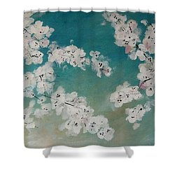 Cherry Blossoms Against Sky Shower Curtain by Lynne McQueen