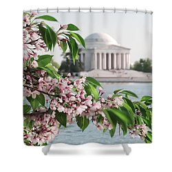 Shower Curtain featuring the photograph Cherry Blossoms And The Jefferson Memorial 2 by Mitchell R Grosky