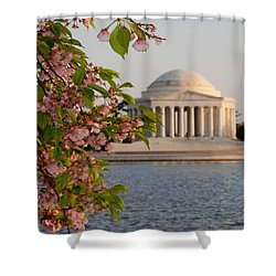 Shower Curtain featuring the photograph Cherry Blossoms And The Jefferson Memorial 3 by Mitchell R Grosky