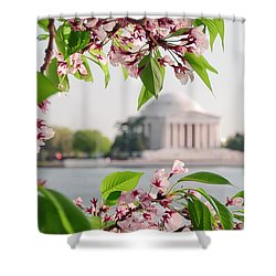 Shower Curtain featuring the photograph Cherry Blossoms And The Jefferson Memorial by Mitchell R Grosky