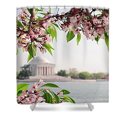 Shower Curtain featuring the photograph Cherry Blossoms And The Jefferson Memorial Panorama by Mitchell R Grosky
