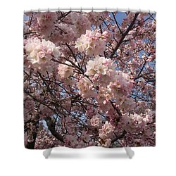 Cherry Blossoms For Lana Shower Curtain by Emmy Marie Vickers