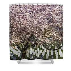 Cherry Blossoms Grace Arlington National Cemetery Shower Curtain by Susan Candelario