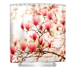 Cherry Blossoms - Springtime Blush Pink Shower Curtain by Vivienne Gucwa