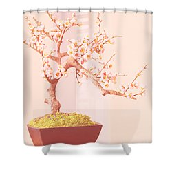 Cherry Bonsai Tree Shower Curtain