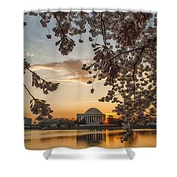 Cherry Sunrise Burst Shower Curtain