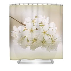 Cherry Tree Blossoms Shower Curtain by Sandy Keeton