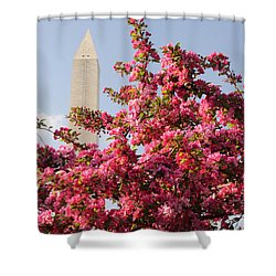 Shower Curtain featuring the photograph Cherry Trees And Washington Monument 5 by Mitchell R Grosky