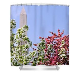 Cherry Trees And Washington Monument Four Shower Curtain by Mitchell R Grosky