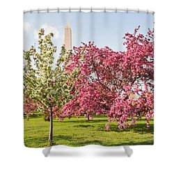 Cherry Trees And Washington Monument Three Shower Curtain by Mitchell R Grosky
