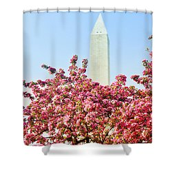 Cherry Trees And Washington Monument Two Shower Curtain by Mitchell R Grosky