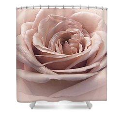 Cherry Vanilla Sundae Shower Curtain by Darlene Kwiatkowski