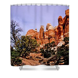 Chesler Park Pinnacles Shower Curtain by Ed  Riche