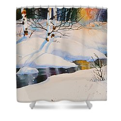 Chester Creek Shadows Shower Curtain by Teresa Ascone