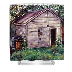 Chester's Treasures Shower Curtain by Linda Mears