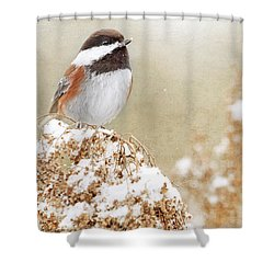 Chickadee And Falling Snow Shower Curtain by Peggy Collins
