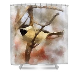 Shower Curtain featuring the painting Chickadee Watercolor by Kerri Farley