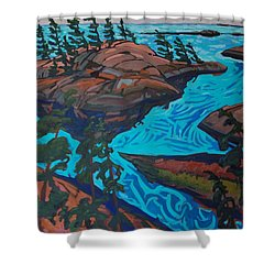 Chickanishing Creek Shower Curtain by Phil Chadwick
