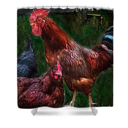 Chickens Shower Curtain