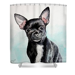 Chihuahua Black Shower Curtain