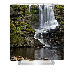 Childs Park Waterfall Shower Curtain by Susan Candelario