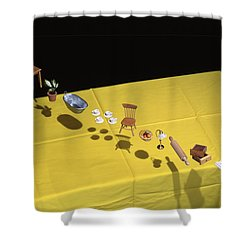 Child's Play Shower Curtain by Daniel Furon