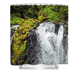 Chilkoot Falls Shower Curtain