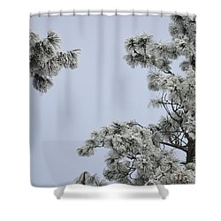 Chill Tree Shower Curtain