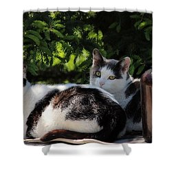 Chillin' Brothers Shower Curtain